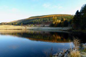 Autumn sunshine by Loch Shandra