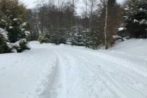 Thick snow on Cairnhill Lodge driveway