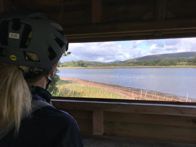 View from the bird hide on Loch of Lintrathen
