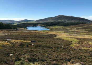 A view towards Loch Shandra with Mount Blair in the background in Glenisla Scotland