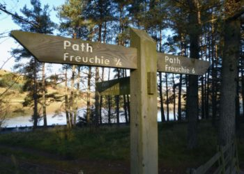 A wooden way-marker with directions for walkers and cyclists