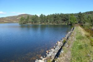 Simple dam on Auchintaple Loch